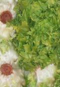 """Salat """"Endivien"""""""